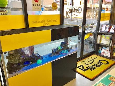 株式会社ベストランド五香 千葉県 松戸市 店内の様子